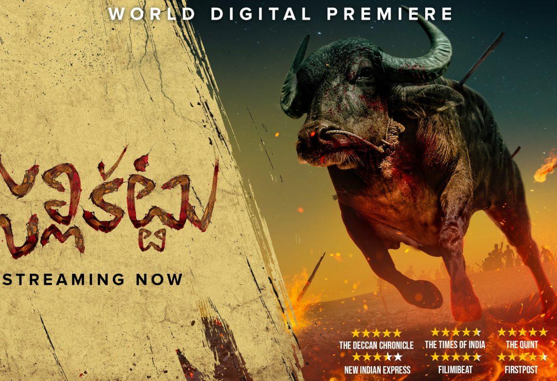 Adventurous Telugu Movies That Engages Audience